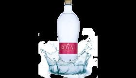 ROYAL WATER - PRÉMIOVÁ DETSKÁ MINERÁLNA VODA S PH 7,2