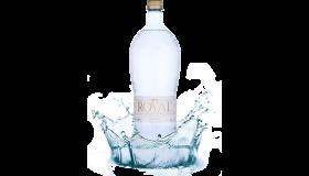 ROYAL WATER - PRÉMIOVÁ ALKALICKÁ IONIZOVANÁ VODA PH 8,5