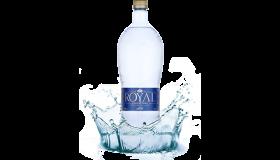 ROYAL WATER - PRÉMIOVÁ ALKALICKÁ IONIZOVANÁ VODA PH 9,3
